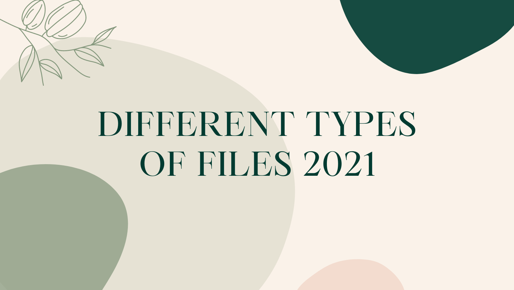 Different types of files 2021